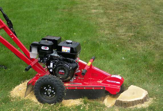 Raleigh Stump Grinding Removal Service Wake Forest